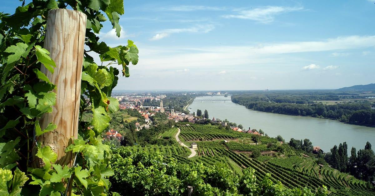 Aussicht richtung Krems an der Donau