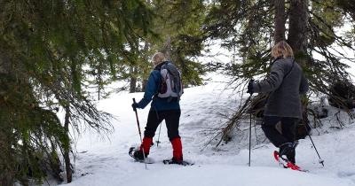 Schnupperkurs sneeuwschoenwandelen