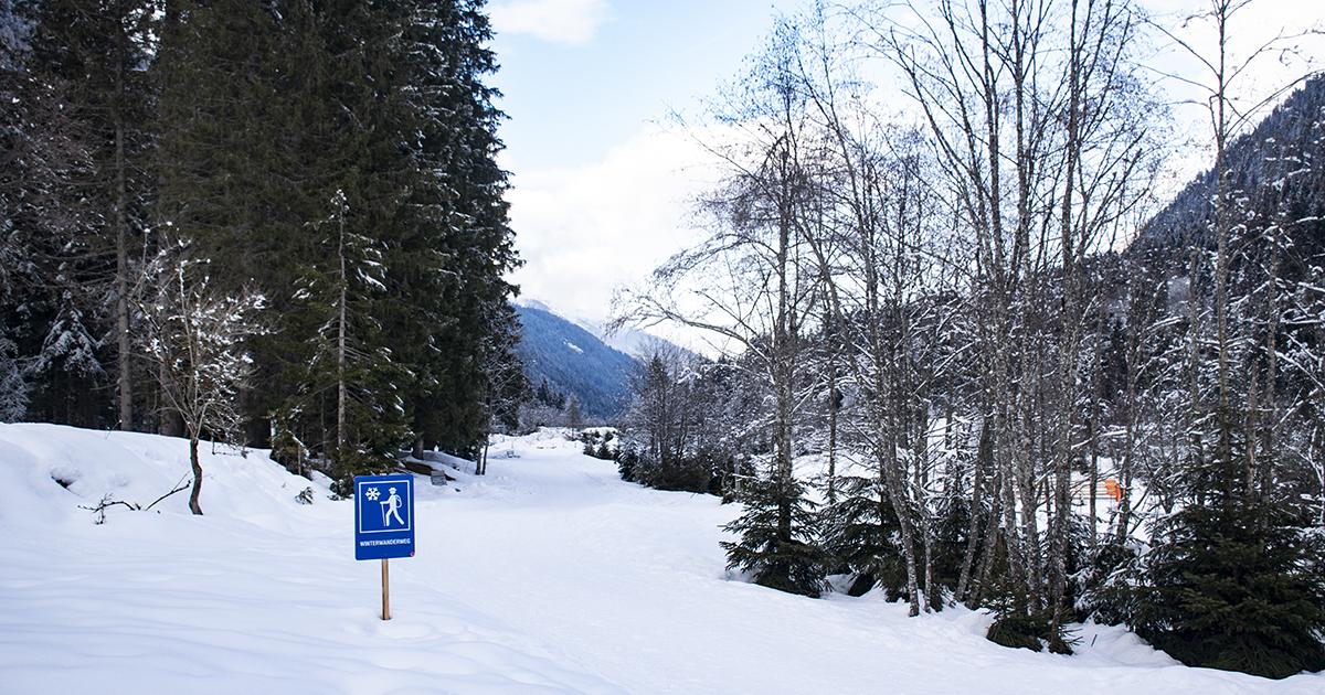Skigebied Serles met winterwandelroutes
