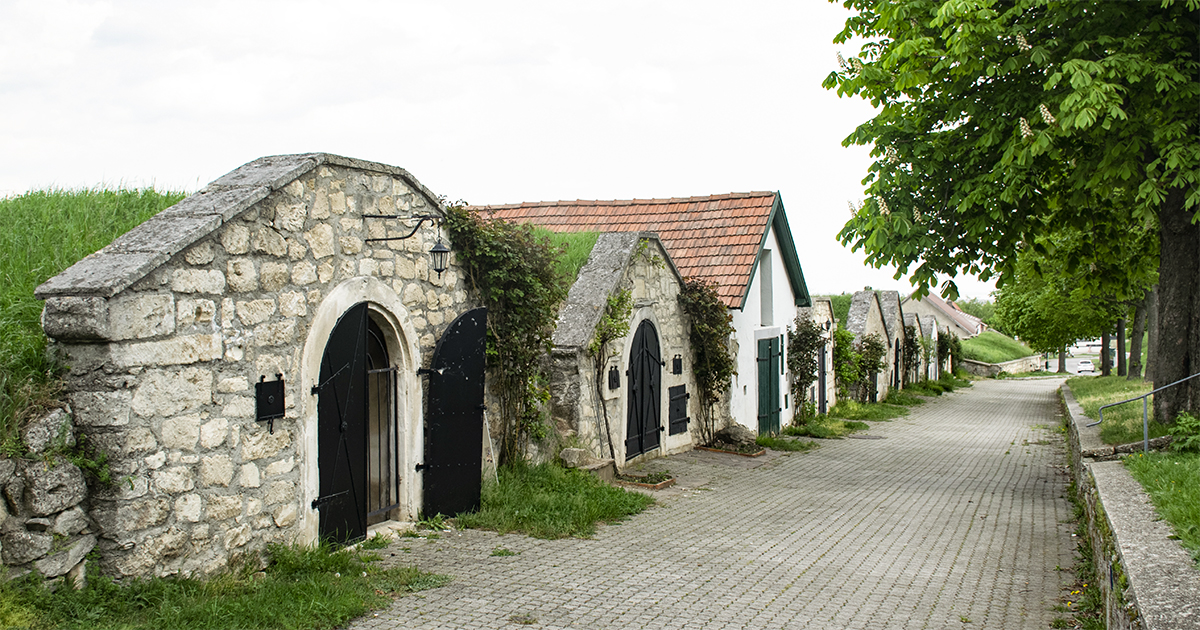 Kellergasse in Breitenbrunn