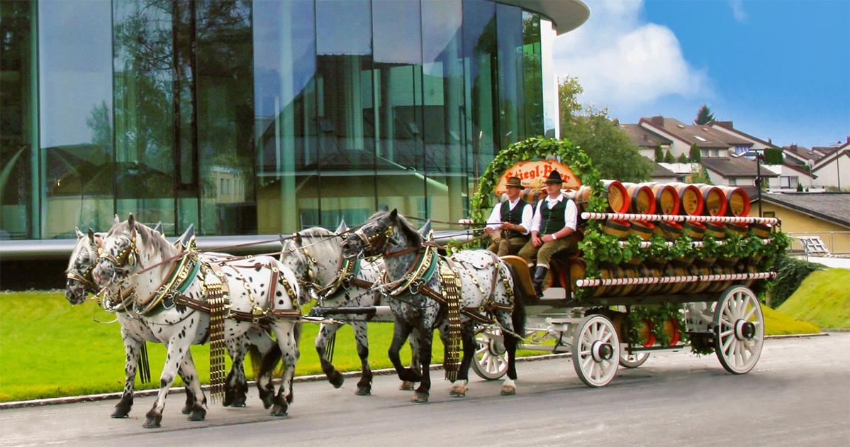 Stiegl bezorgt in de nabije omgeving nog steeds bier met paard en wagen