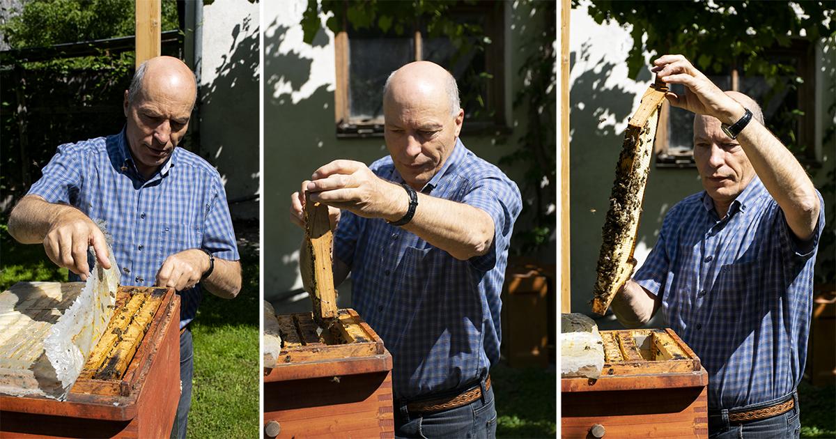 Imker Heinrich Gritsch en zijn bijen