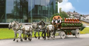 Stiegl - Pferde vor Sudhaus