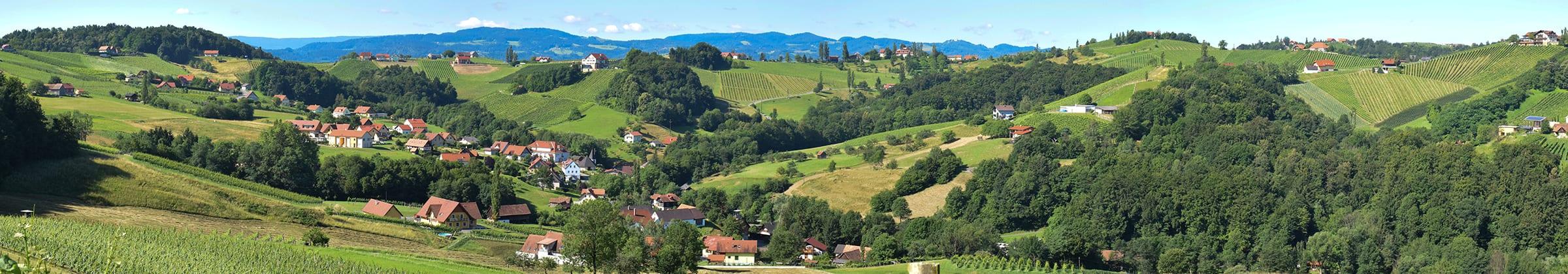 Uitzicht vanaf wijngoed Gross