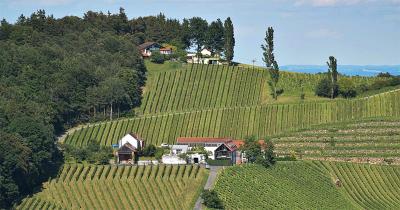 Wijngoed Gross (midden)