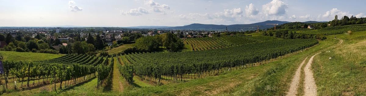 Uitzicht op Bad Vöslau
