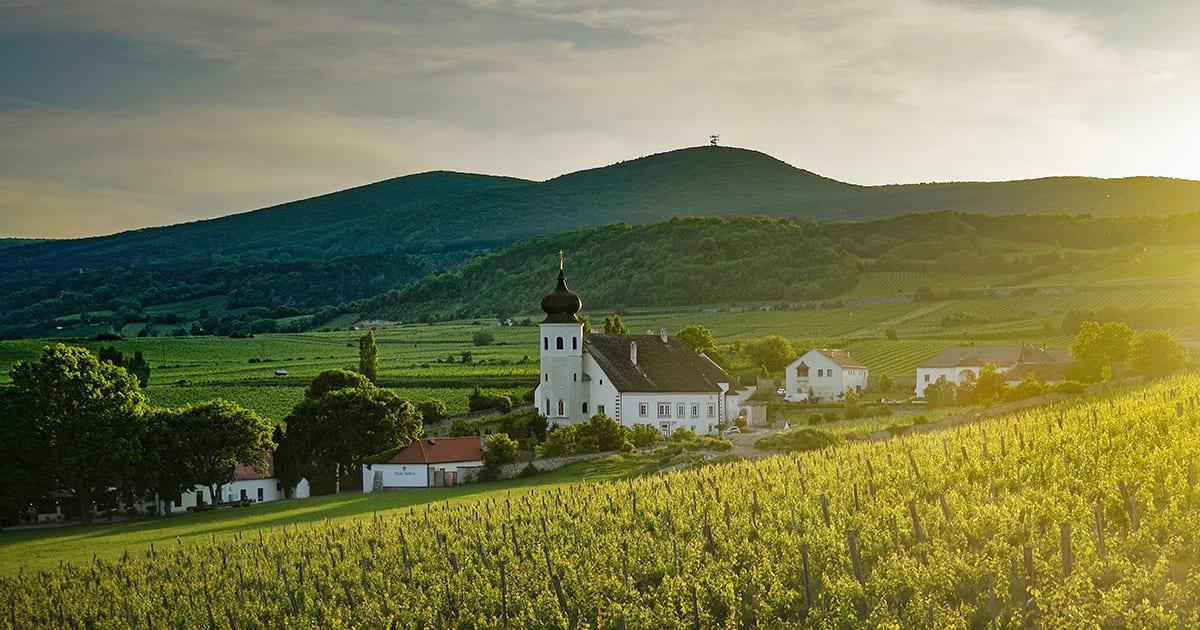 Thermenregion, Freigut Thallern
