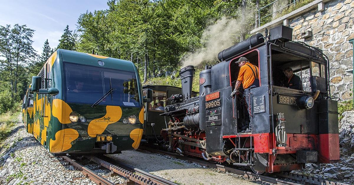 Schneebergbahn Nostalgiedampfzug-und-Salamander