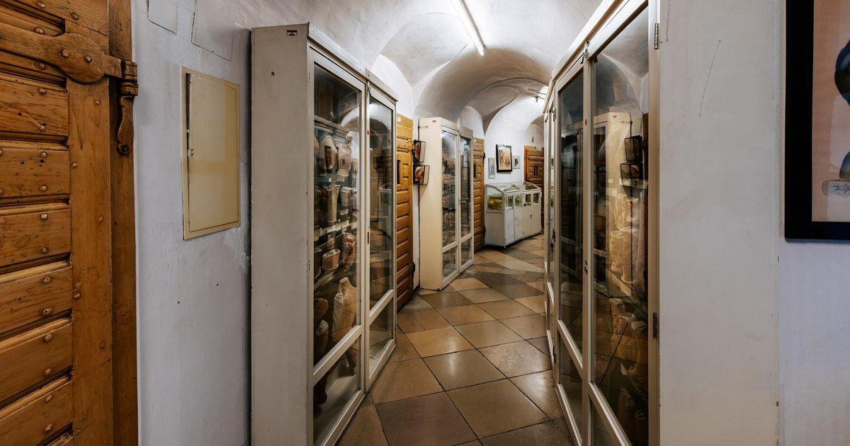 Pathologisch-anatomische-Sammlung in de Narrenturm